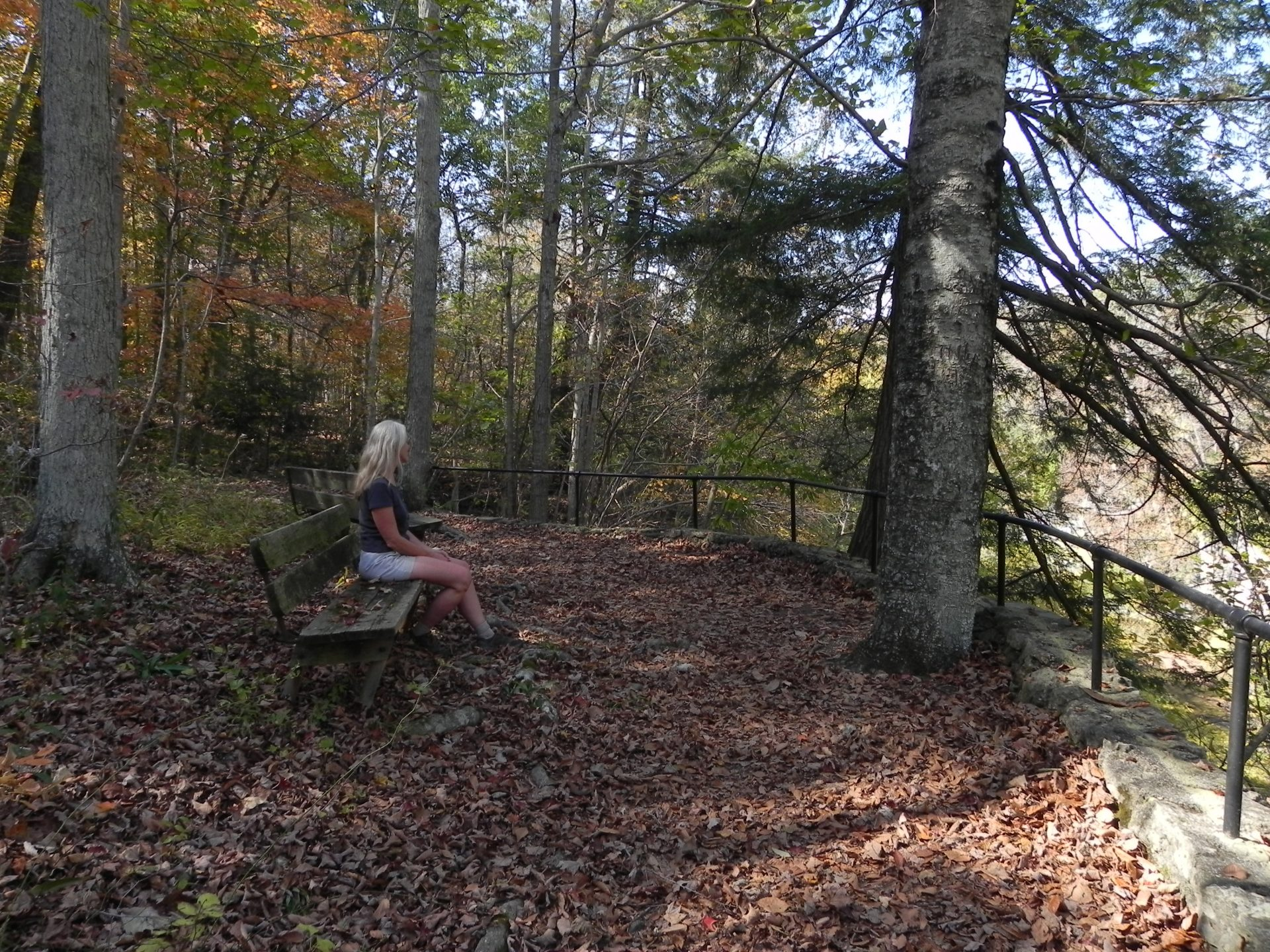 Outstanding views of the Rocky Fork Gorge can be found on the Etawah Woods Trail