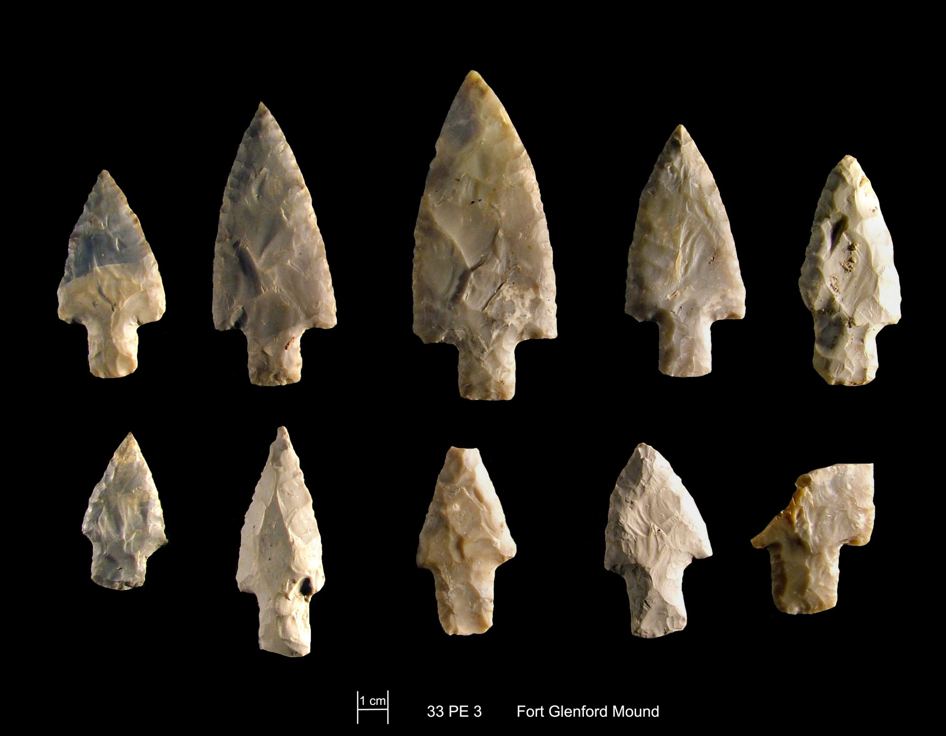 Adena points excavated from the stone mound at Glenford Fort. Photo courtesy of Richard Moats.