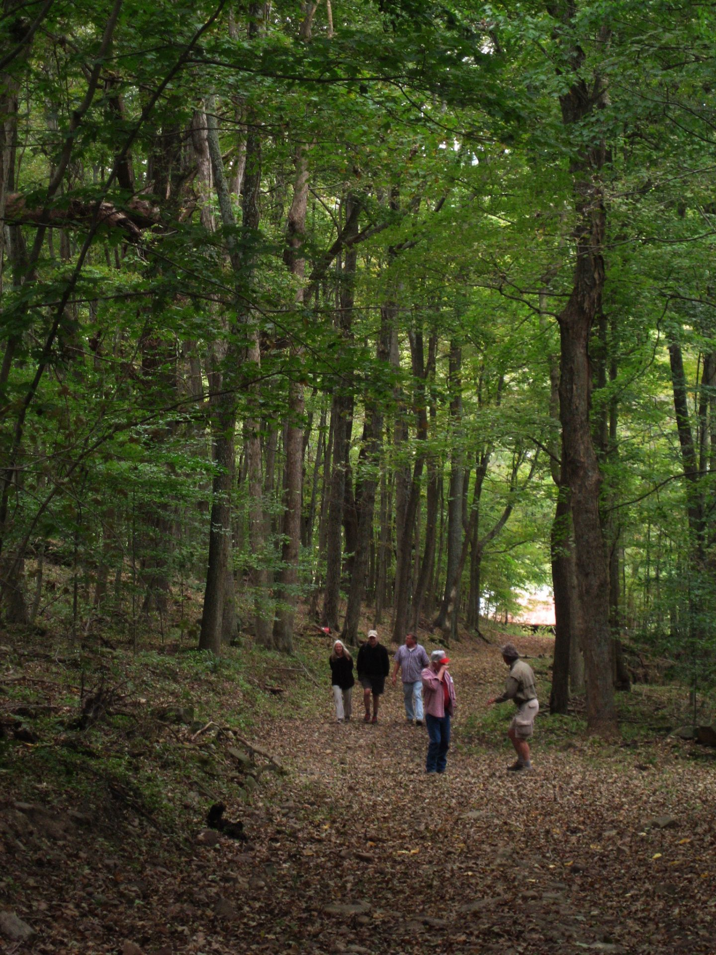 65 acres of healthy Appalachian forest, dominated by oaks and hickories, are part of the acquisition.