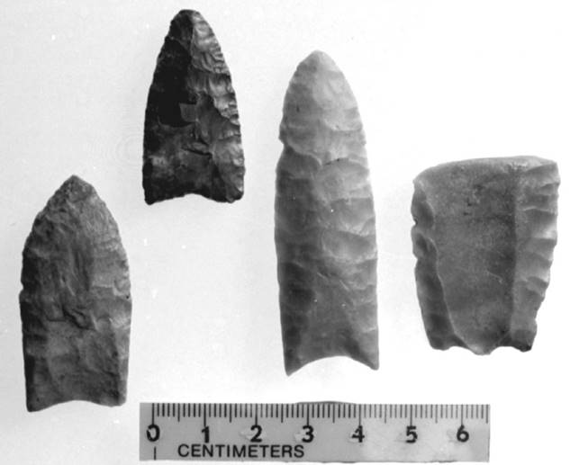 Examples of Paleoindian fluted points.
