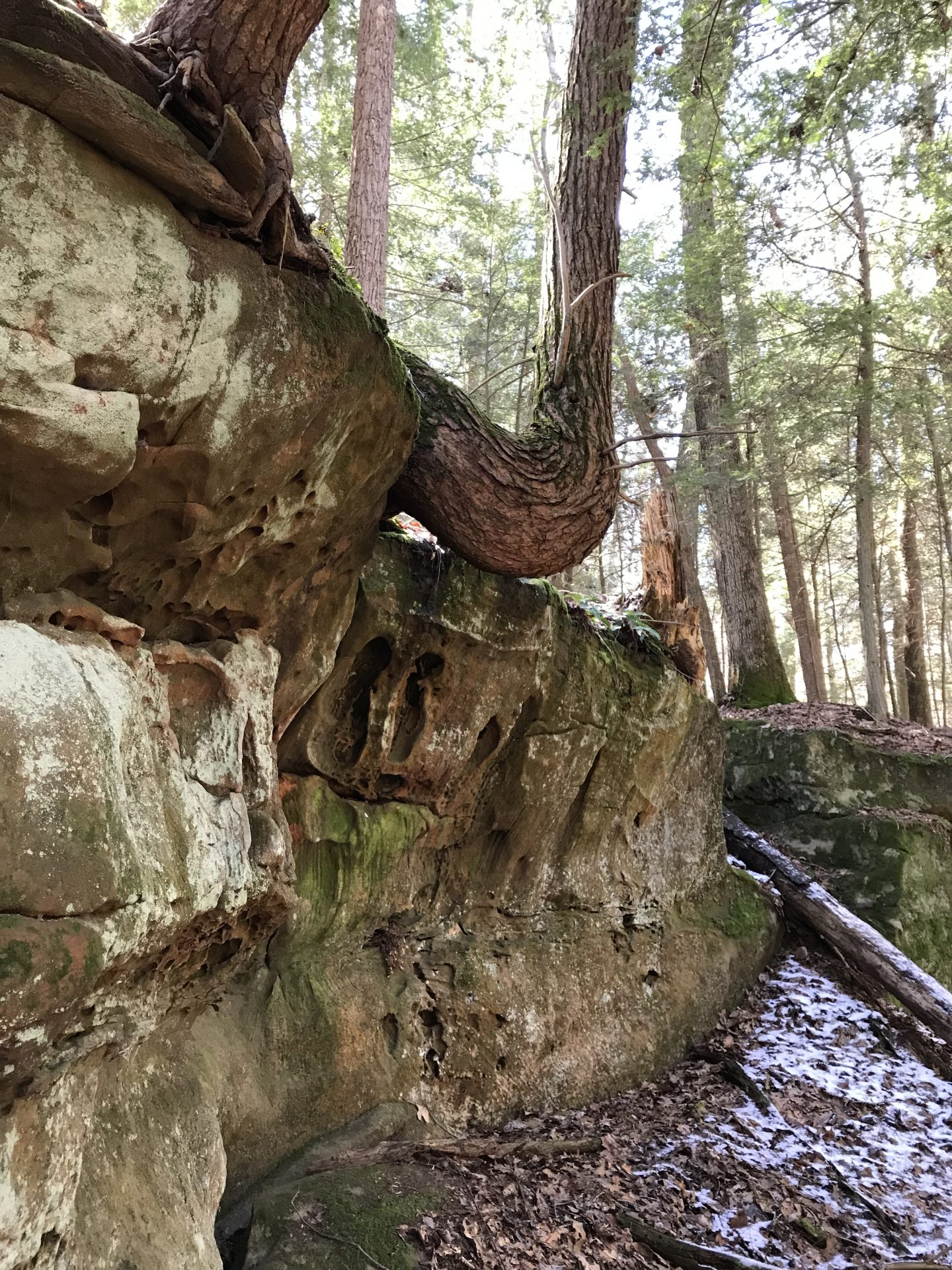 Impressive Rock Formations on the Fern Gully tract. Photo by Brian Blair.