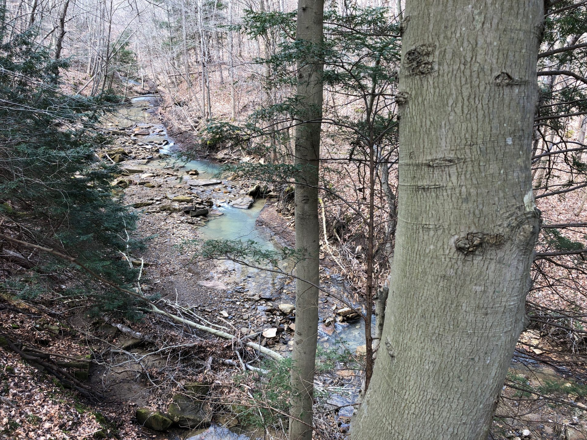A view of Rock Run