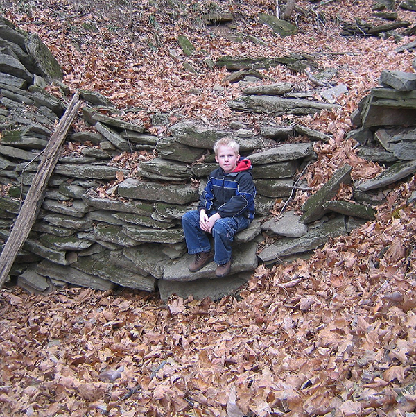 Old Rock Wall on Boone Preserve